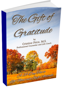 Full Gratitude Package